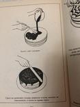 Учитесь вкусно печь ГДР 1986 г. №5, фото №9