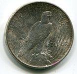 Мирный доллар 1925 г. Серебро., фото №3