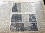 1950 Литературная газета, фото №5
