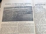 1950 Литературная газета, фото №6