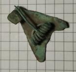 Фибула цикада, фото №6