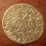 1547 полугрош Литва 1547 Пагоня Всадник, фото №9