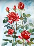 Розы красные, фото №2