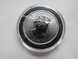 Канада 2012 год 5 долларов серебро 9999 Пума 1 унция, фото №4