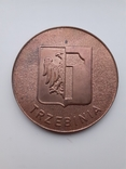 Настольная медаль. Польша., фото №6