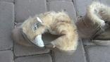 Сапожки зимові для дівчинки 25 р., фото №3