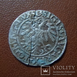 Полугрош 1559  серебро (М.3.44)~, фото №4