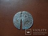 Полугрош 1559  серебро (М.3.44)~, фото №6