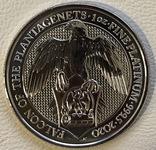 100 фунтов 2020 год Англия «Сокол» платина 31,1 грамм 999,5', фото №2