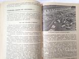 Беседы о животноводстве  Залыгин А.Г.  Просвещение 1986. 126с. ил., фото №9