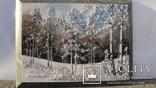 Природный пейзаж из уральских камней, самоцветы  СССР, фото №2