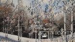 Природный пейзаж из уральских камней, самоцветы  СССР, фото №3