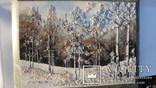 Природный пейзаж из уральских камней, самоцветы  СССР, фото №4