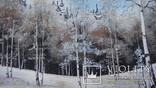 Природный пейзаж из уральских камней, самоцветы  СССР, фото №6