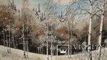 Природный пейзаж из уральских камней, самоцветы  СССР, фото №10