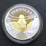 20 гривень 2000 року. Трипілля. Золото/срібло. Банківський стан, фото №5
