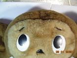 Чебурашка в коллекцию. ссср. 45 х 33 см, фото №4