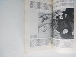 Путешествие за редкими книгам, фото №4