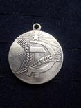 Медаль «За преобразование Нечерноземья РСФСР», копия, фото №3
