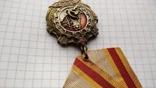 Копия Орден трудовой славы 1 степени, фото №6