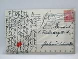 Старинная открытка  Люнебургская пустошь Германия, фото №6