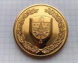 Сувенирная медаль с гербом Киева. Город - Герой., фото №4