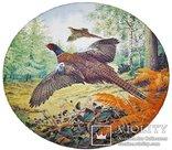 Тарелка коллекционная - Фазаны в полете - Derek Braithwaite Royal Grafton - англия - 1987г, фото №2