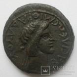 Боспорское ц-во, Ассарий Митридата VIII 39-42 гг.н.э., фото №3