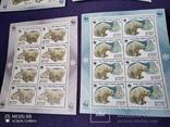 4 малых листа Белые медведи, фото №5