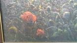 """Картина Шевченка В.А. """"Рассвет"""" холст на картоне,масло, 60х96см., фото №7"""