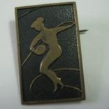 Значок СССР.  Художественая гимнастика с мячом, фото №2