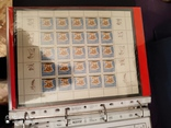 5 малых листов серии грибов 1964г марок СССР, фото №4