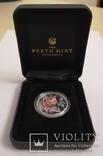 Монета Год свиньи 2019 Серебро 999 пробы 1/2 унции Австралия (цветная), фото №3