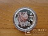 Монета Год свиньи 2019 Серебро 999 пробы 1/2 унции Австралия (цветная), фото №7