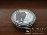 Монета Год свиньи 2019 Серебро 999 пробы 1/2 унции Австралия (цветная), фото №8