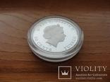 Монета Год свиньи 2019 Серебро 999 пробы 1/2 унции Австралия (цветная), фото №10