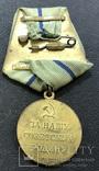 Медаль За оборону Севастополя, фото №4