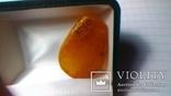 Підвіс, бурштин королівський 4.37 г, фото №8