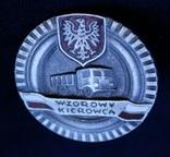 Польша. Отличный водитель. Серебряная степень., фото №2