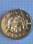 """Медаль школьная """"Победитель"""", фото №3"""