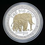 10 Долларов 2001 Слон / Большая Африканская Пятерка Сафари, Сьерра Леоне Позолота