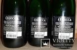 Шампанское Одесса, фото №8