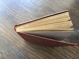 1914 Бялик. Песни и поэмы. Перевод с еврейского-Жаботинский. Иудаика, фото №5