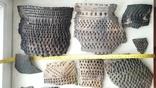 Керамика Катакомбной культуры, фото №7