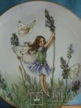 """Коллекционная тарелка """"Феи цветов и полей"""" Сесиль Мэри Баркер., фото №3"""