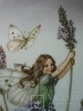 """Коллекционная тарелка """"Феи цветов и полей"""" Сесиль Мэри Баркер., фото №4"""