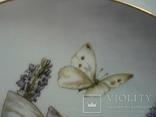 """Коллекционная тарелка """"Феи цветов и полей"""" Сесиль Мэри Баркер., фото №8"""