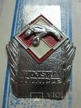 Знак ВВС Польша, фото №9