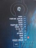 """Чичерина """"СНЫ"""", компакт - диск., фото №5"""