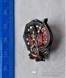 Знак Заслуженный мастер спорта СССР, копия, №024, фото №3